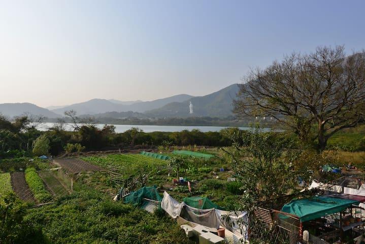 Beautiful big room with a sea view - Hongkong - Aamiaismajoitus