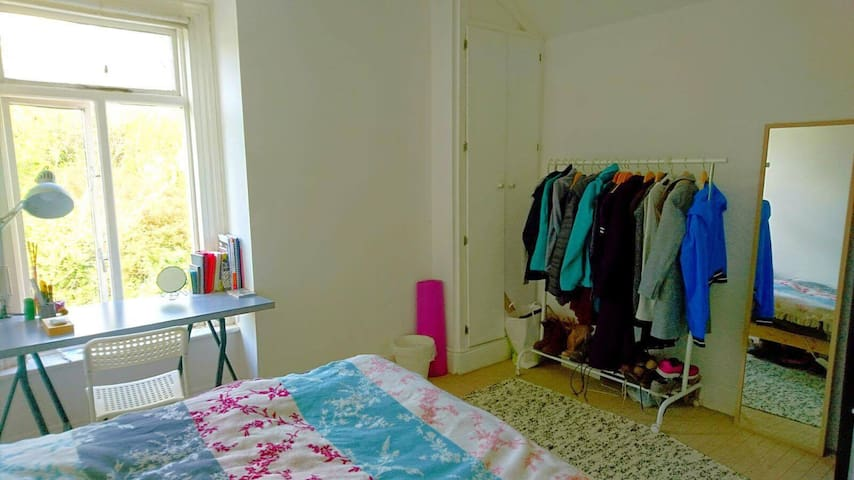 Private Bedroom in Ranelagh, close to transport - Ranelagh - Huis