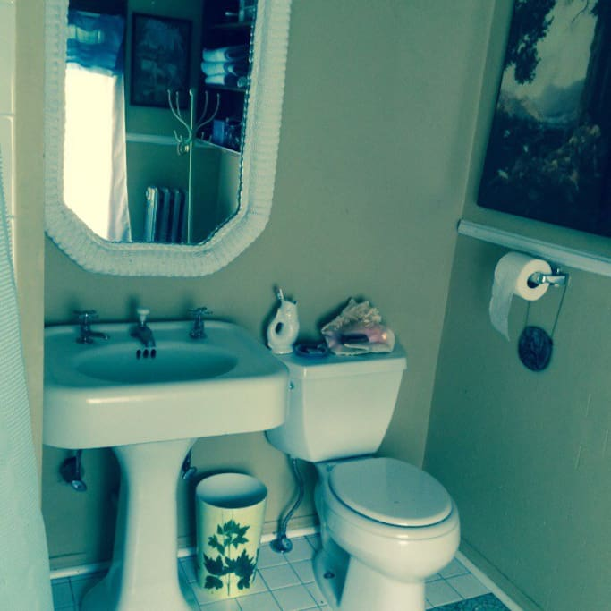The Loo -it is a shared bathroom.