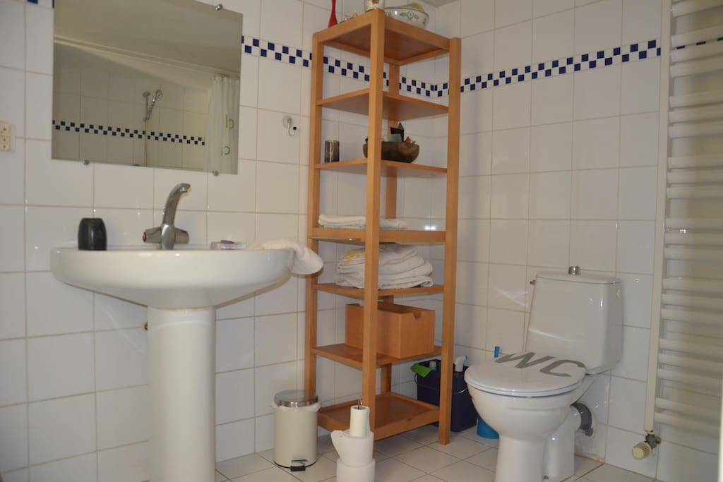 Vaste salle de bain avec ouverture sur la cour intérieure