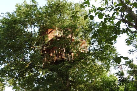 Treehouse deluxe