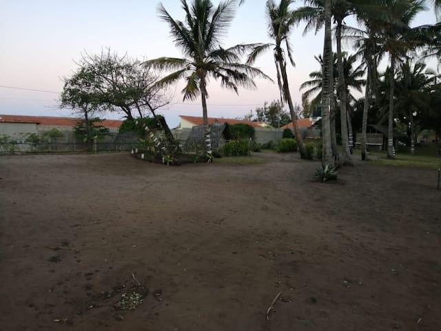 Tofinho Roots - Cabanas