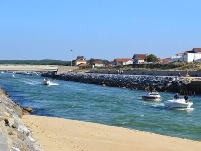 Maison au calme, proximité plage, lac & forêt ! - Pontenx-les-Forges - Hus