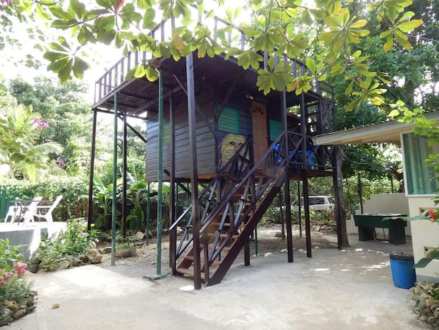 Ackee Treehouse at T-Bird on the Cliffs