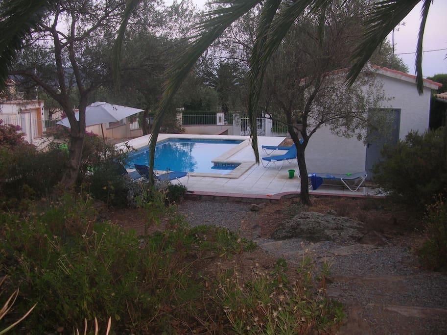 Jardin, piscine et local piscine avec frigo+rangement