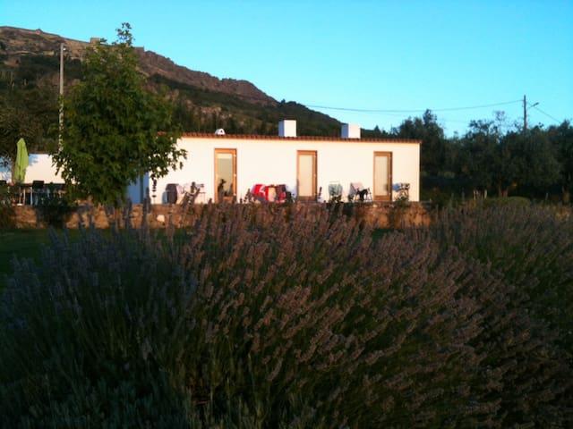 Quinta da Abegoa - Casa do Forno 2 - Marvão - Wohnung