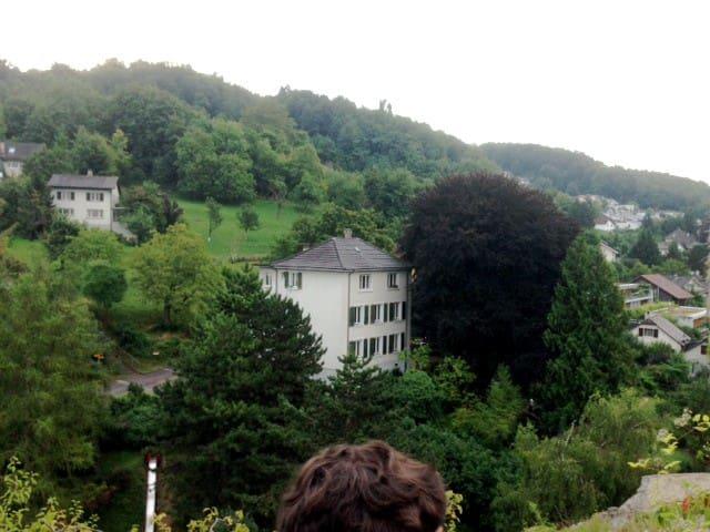 Gemütliche Wohnung bei Basel , 7 km - Münchenstein - Byt
