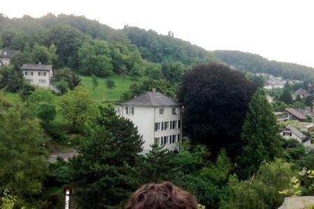 Gemütliche Wohnung bei Basel , 7 km - Münchenstein