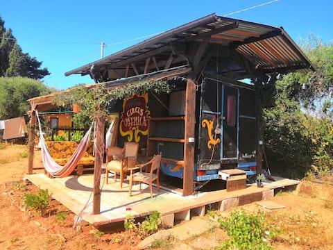 Circus vintage caravan