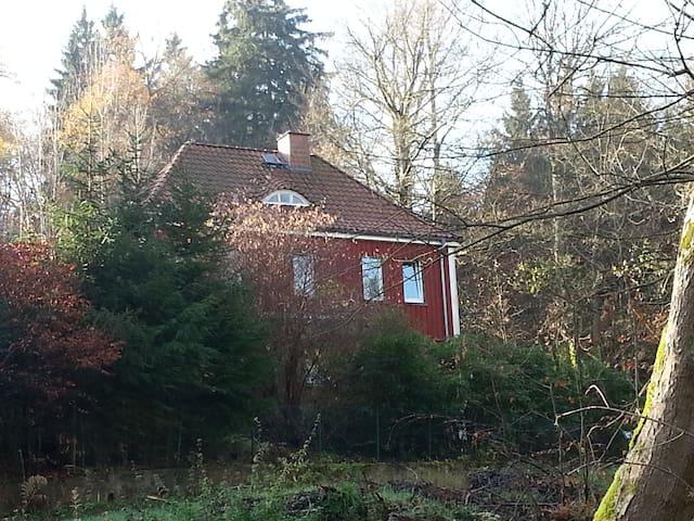 Villa Weltenbummler - Bad Sachsa - Huis
