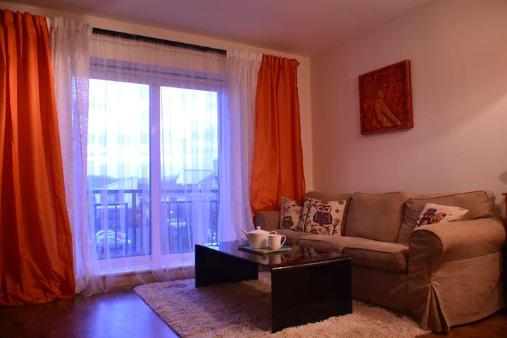 Great Apartment in the city centre - Dublín - Pis