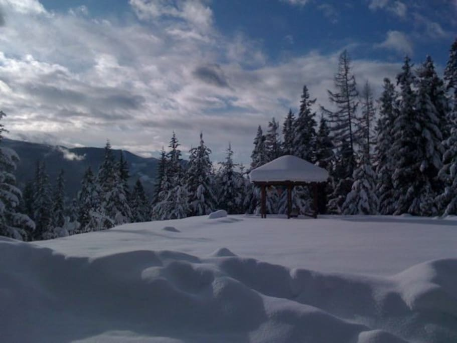 Dare to trek out to the Gazebo for tea?