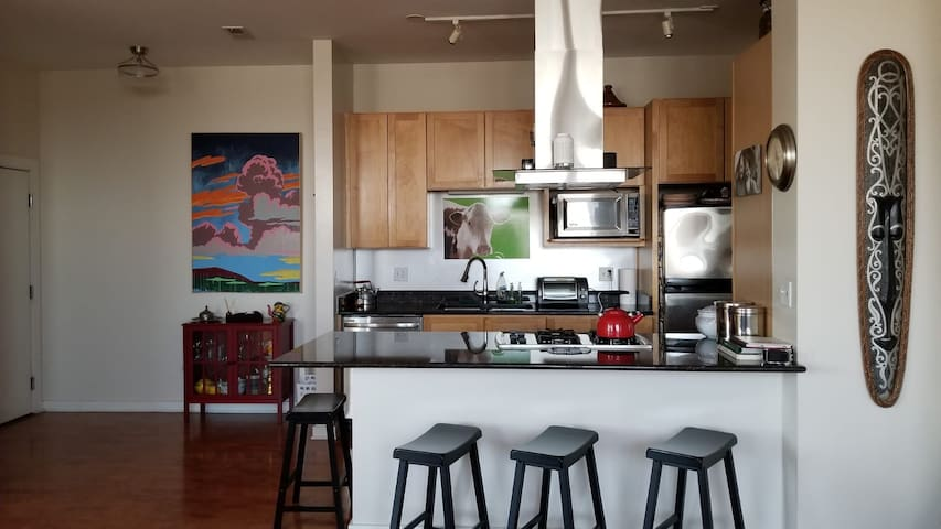 1 Cozy BR in Large  Apartment (Chicago - Pilsen)
