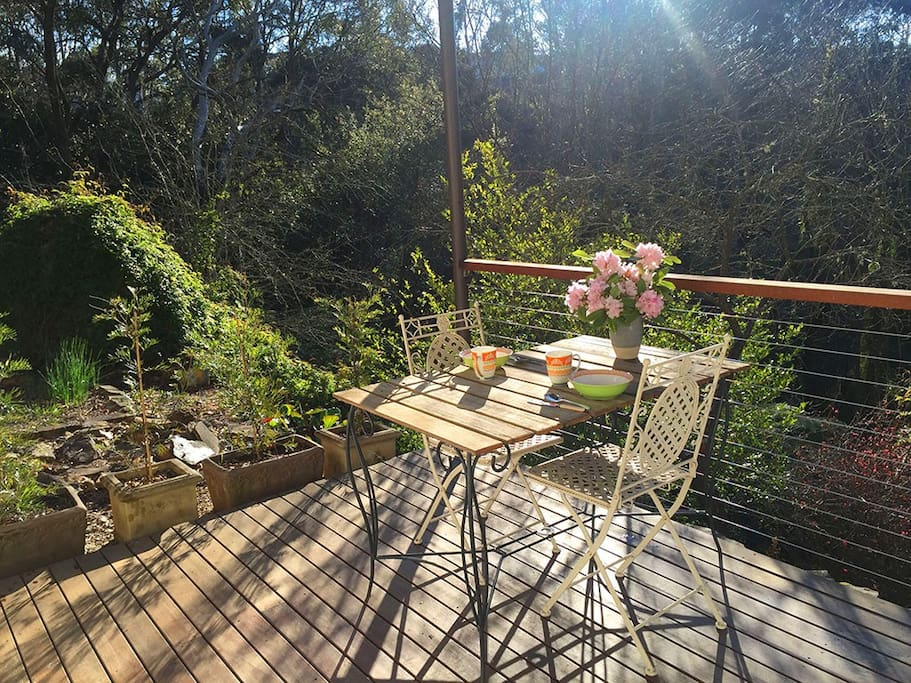 Your private breakfast deck in the morning sunlight