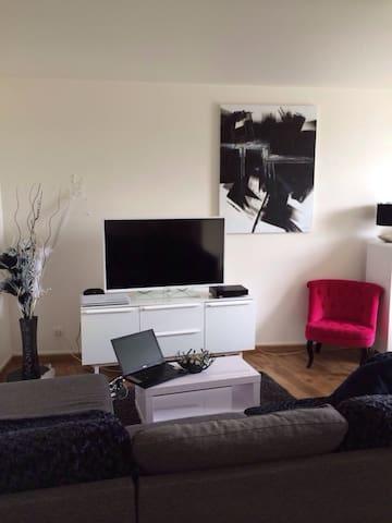 Chambre dans bel appartement 94 - Le Plessis-Trévise - Apartament