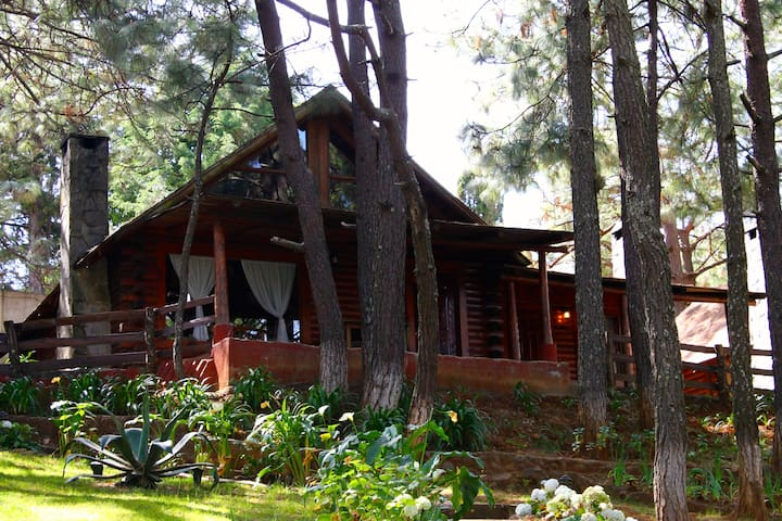 Cozy Wood Cabins in Mazamitla  - Mazamitla