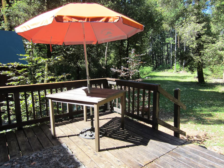 The back patio, with fire or barbecue ring, overlooks a private lawn area.
