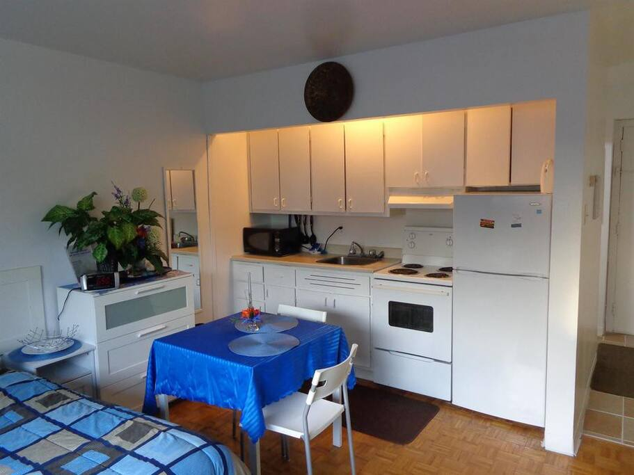 Full Kitchen with a Dining table (following picture)
