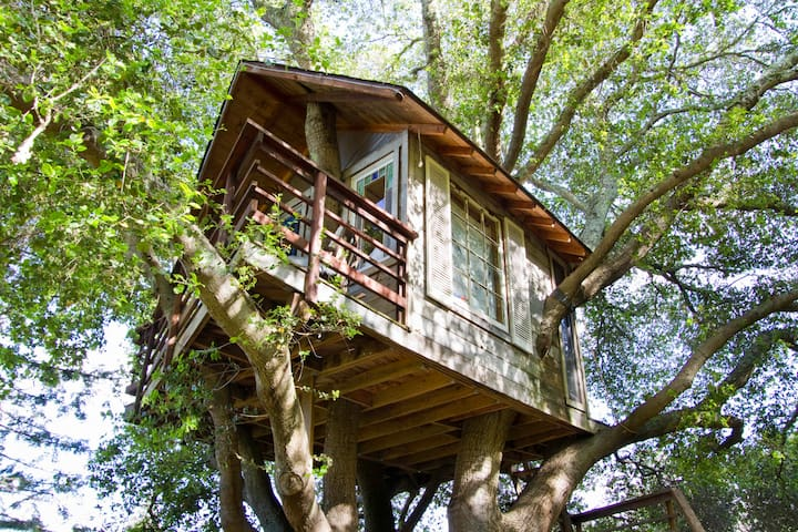Treehouse Above San Francisco Bay! - Burlingame - Treehouse