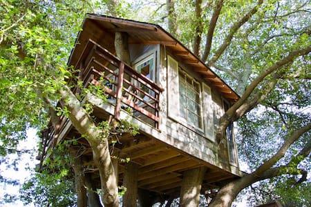 Treehouse Above San Francisco Bay! - 伯靈格姆(Burlingame)