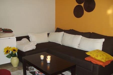 Appartement 50 m2 rdc centre ville - Orange - Daire