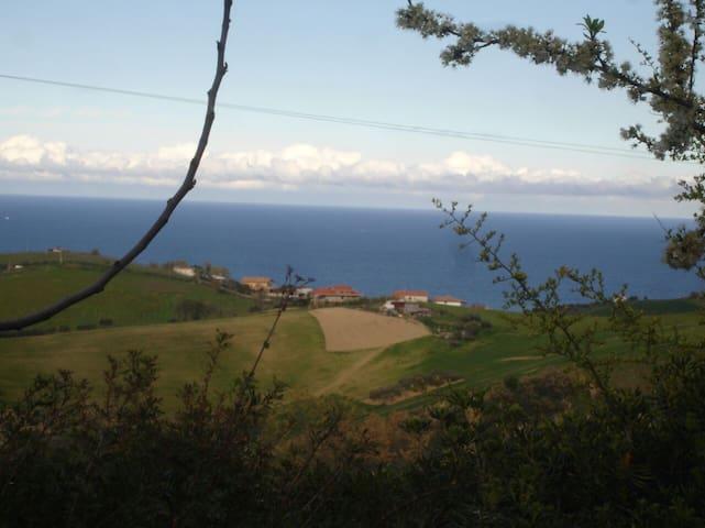 Villa in Collina sul Mare - Roseto degli Abruzzi - Casa de camp