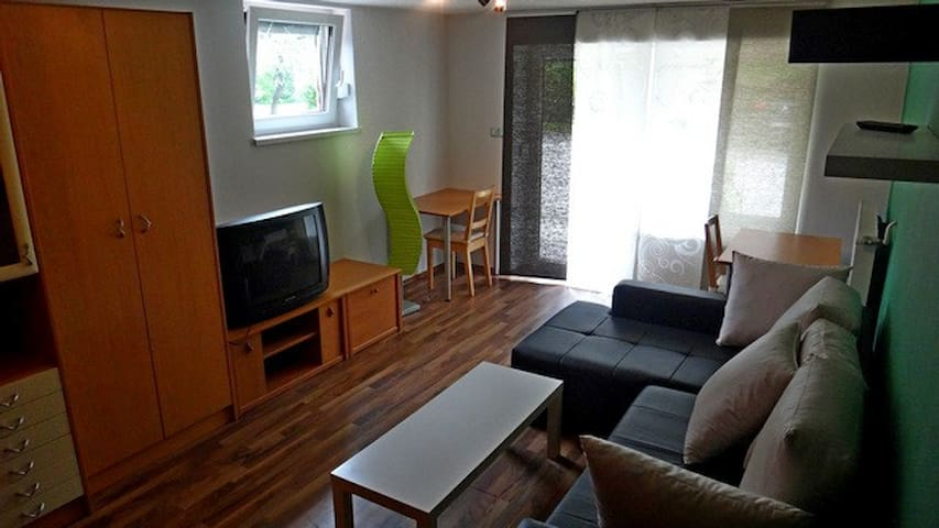 Ground floor room,kitch.,free wi fi - Ljubljana - Apartemen