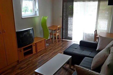 Ground floor room,kitch.,free wi fi - Ljubljana - Daire