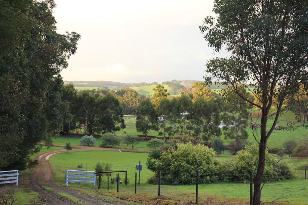 A glimpse of the rolling hills around Nannup