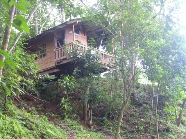 Rio Tranquilo Treehouse - Playa Coyote - Treehouse