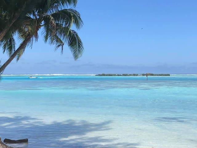Paradise time