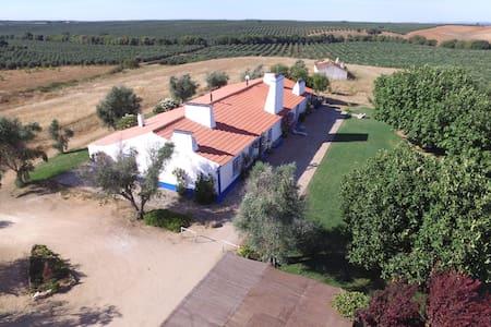Casa Giesta - Avis