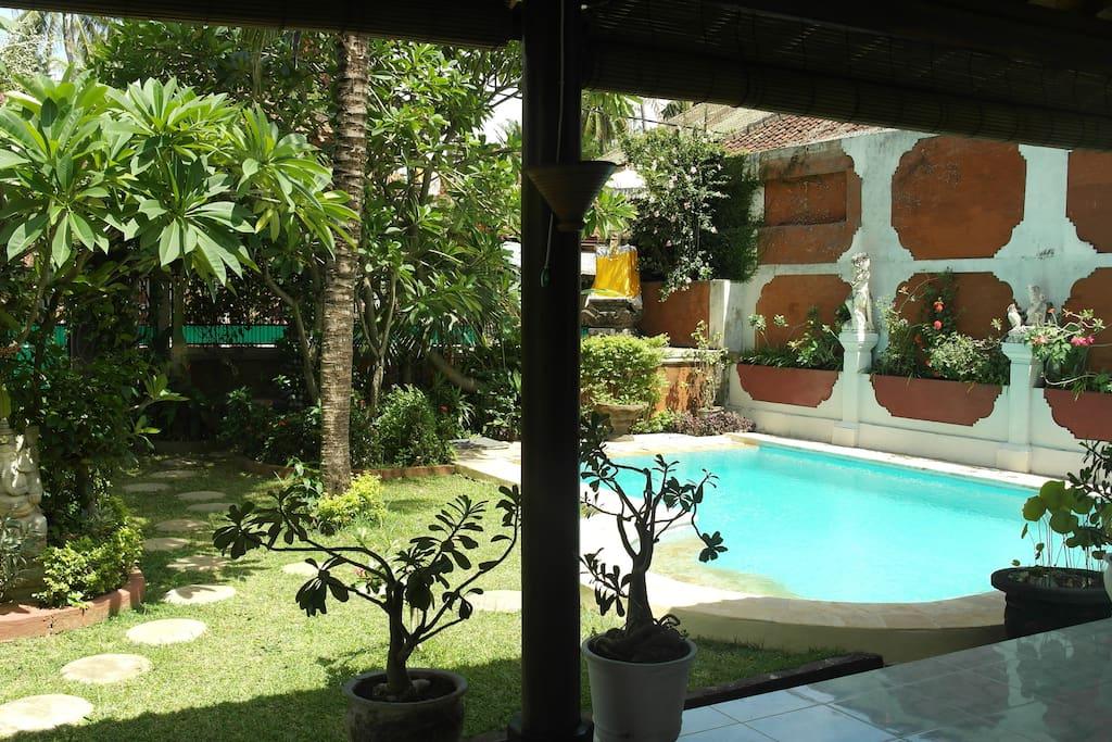 View from the terrace on the pool and garden / Zicht vanaf het overdekte terras (voorzien van een plafondfan) op het zwembad en de tuin.