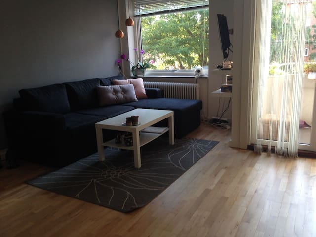 Entire apartment in COPENHAGEN CITY - Copenaghen