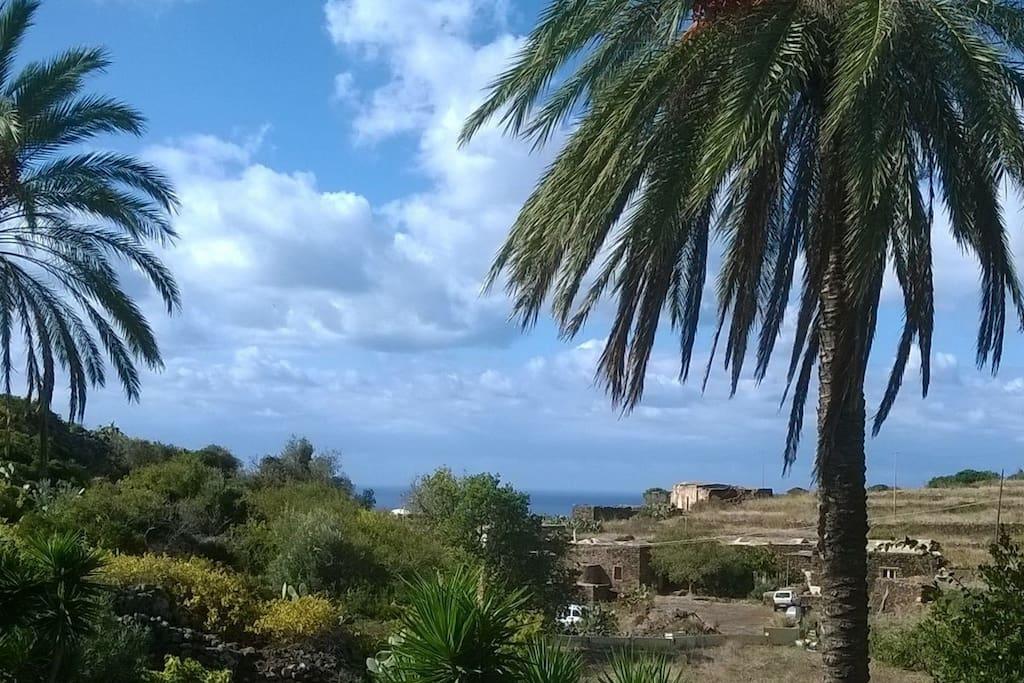 Panorama dal tetto del Dammuso