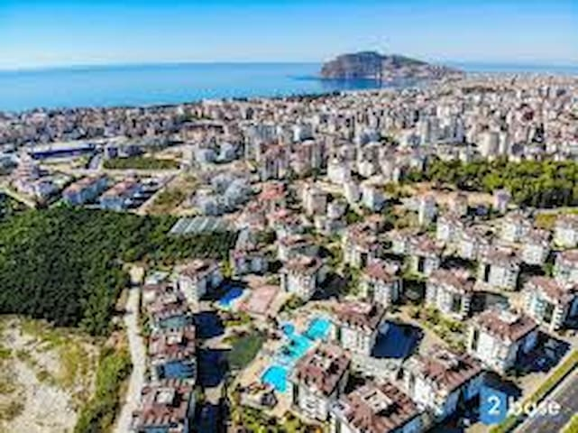 Alanya olive city