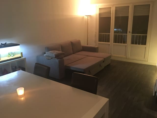 Appartement cosy proche 15ème