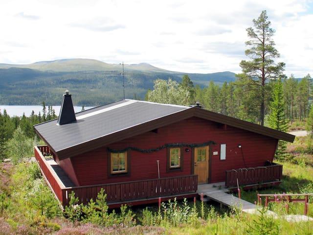 Lofsdalen Fjällviolen (HJD026)