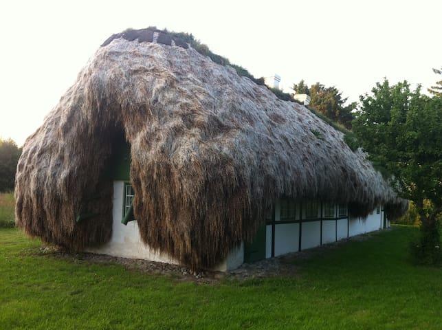 Gennemrestaureret historisk tanghus - Læsø - Cabin