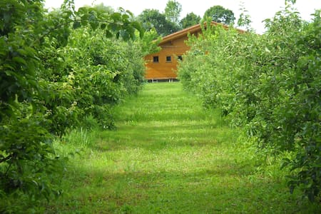 Peace and relax in the organic farm - Bagnarola - Bed & Breakfast