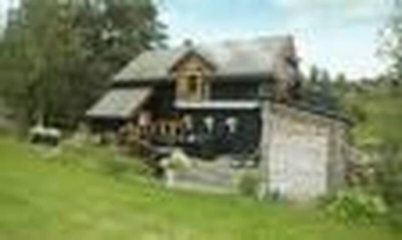 Cottage on the beach - Bolsøya - Talo
