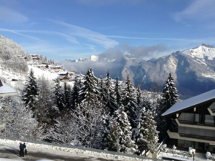 300 from ski lifts Portes du soleil