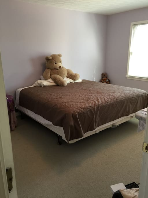 * Basic room with King Size Bed