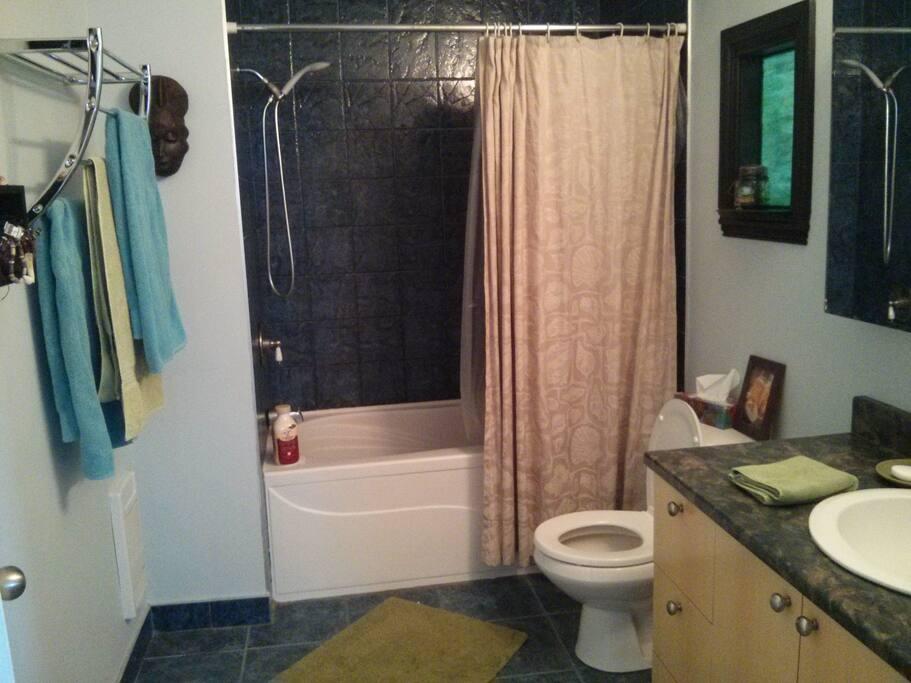 salle de bain avec bain-douche