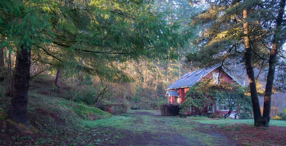 Adventure Hub for NW Oregon - Cottage on 2-Acres - Damascus - Cabana