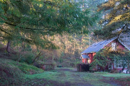 Adventure Hub for NW Oregon - Cottage on 2-Acres