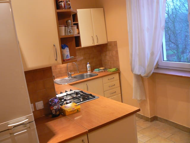 Apartment Poland Cracow Nowa Huta