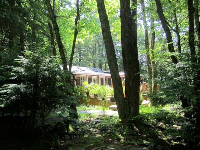 WOODED STREAMSIDE CATSKILLS CABIN  - Smallwood - 통나무집