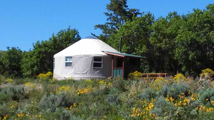 CARIBOU YURT B&B - Pocatello - Bed & Breakfast
