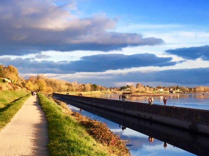 Entre Loire et canal d'Orléans, studio de charme  Vous aimez la Loire, le canoë et les balades à vélo, Agnès et Francis vous accueillent, au sein d'un site protégé, dans ce studio indépendant, tout confort, de 27m2 avec accès direct au chemin de halage.